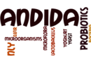 Is there a medical test for Candida?
