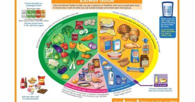 The Eatwell Guide is nutritionally deficient